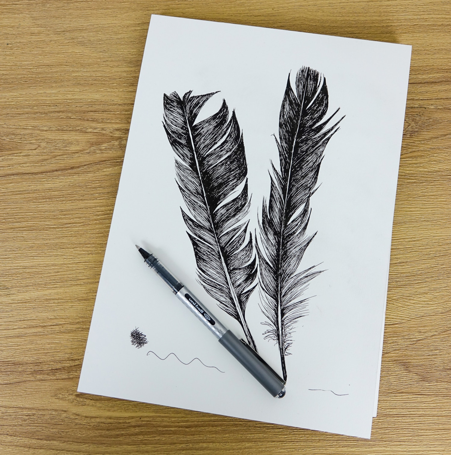 A sketch of two feathers using a Uni-ball Eye Designer pen