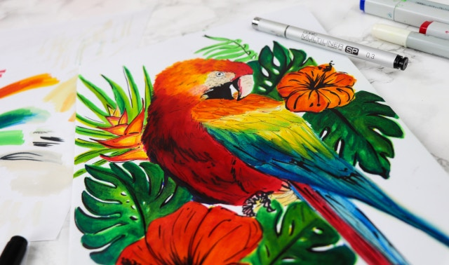 Marker drawing of a parrot using COPIC markers