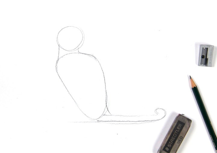 Sketch the body on drawing paper