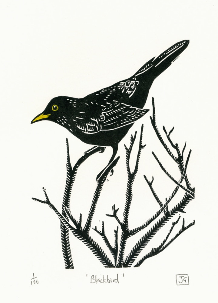 Blackbird by James Green