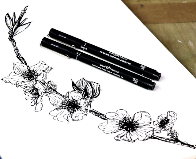 How to: Get your drawing game on with Inktober   Cass Art