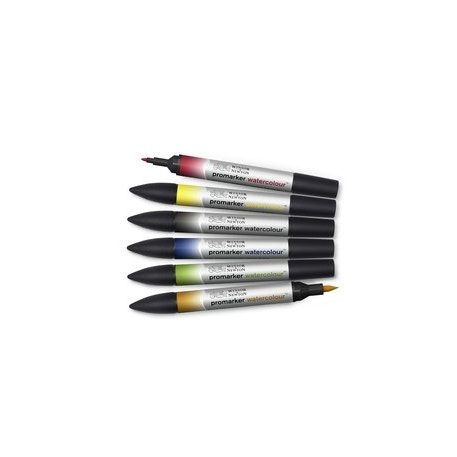 Winsor & Newton Promarker Watercolour Assorted Colours Set of 6 | Cass Art