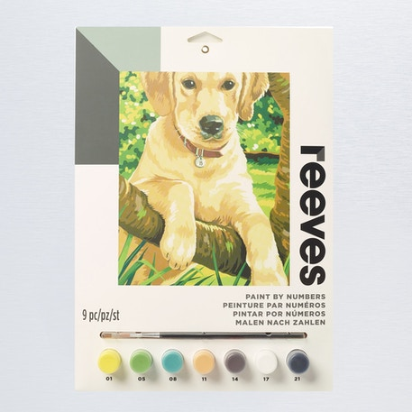 Reeves Paint by Numbers Medium Sets | Cass Art