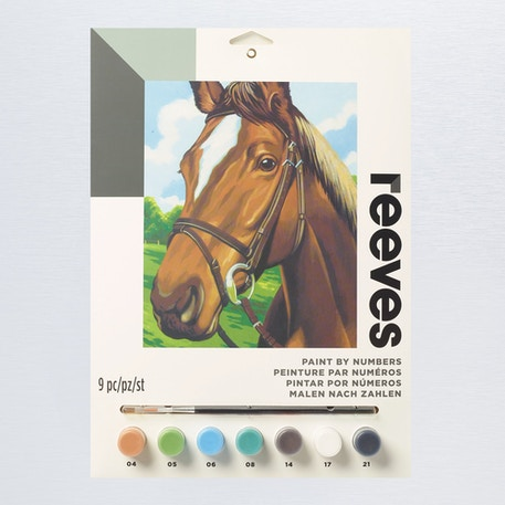 Reeves Paint by Numbers Medium Sets   Cass Art