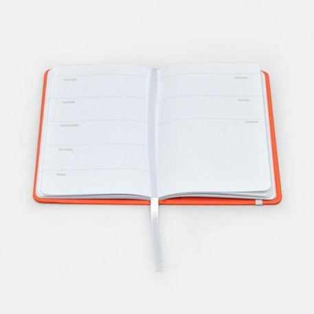 Pantone Planner Non-Date Diary 2019 Colour of Year Living Coral | Cass Art
