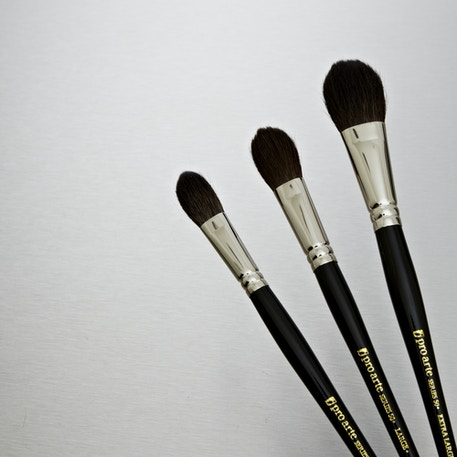 Pro Arte Artist Squirrel Wash Brush Series 50 | Artist Brushes | Cass Art