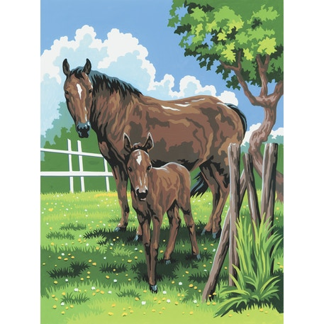 Royal & Langnickel Paint by Numbers Small Mare Foal | Cass Art