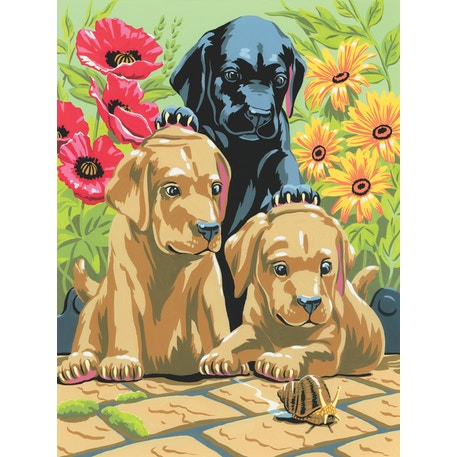 Royal & Langnickel Paint by Numbers Small Labrador puppies | Cass Art