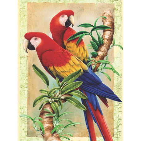 Royal & Langnickel Paint by Numbers Bamboo parrots | Cass Art