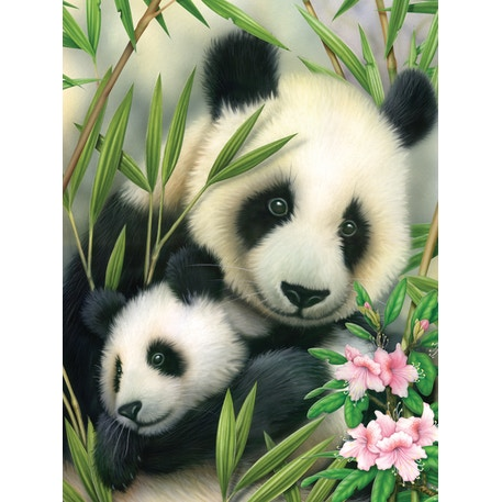 Royal & Langnickel Paint by Numbers Panda and baby | Cass Art