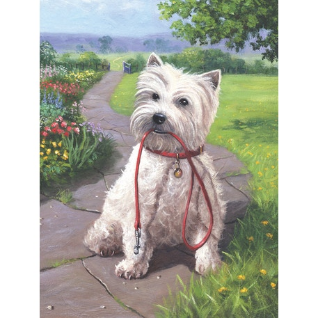 Royal & Langnickel Paint by Numbers Time for a walk Dog | Cass Art