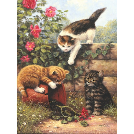 Royal & Langnickel Paint by Numbers Kittens at play   Cass Art