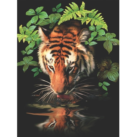 Royal & Langnickel Paint by Numbers Thirsty Tiger | Cass Art
