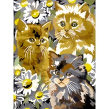 Royal & Langnickel Paint by Numbers Small Kitten & daisies