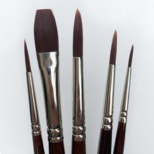 Pro Arte Acrylix Series 202/204 Acrylic & Oil Brush Cass Exclusive Set of 5